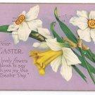 Narcissus Daffodil Vintage Easter Postcard Stecher 1930