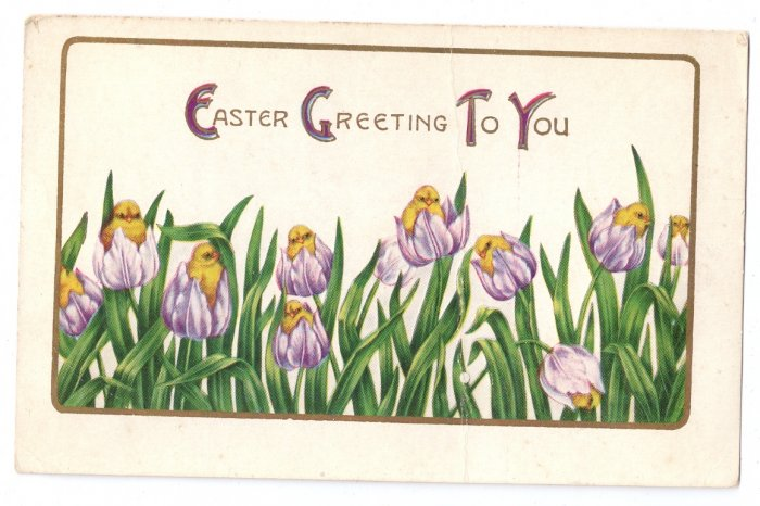 Whitney Chicks in Tulips Embossed Vintage Easter Postcard 1920