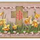 Daffodils Pussy Willows Embossed Gilt Vintage Easter Postcard 1909