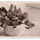 Rotograph 1907 Real Photo Congratulations B&W RPPC Iris Flowers