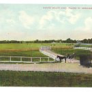 Plains of Abraham Wolfe Quebec Canada c 1910 Vintage Postcard