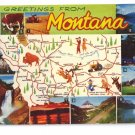 Greetings from Montana State Map Postcard MT Chrome