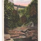 Watkins Glen NY Jacob's Ladder Tichnor Vintage Postcard