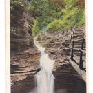 Watkins Glen NY Sylvan Rapids Tichnor Vintage Postcard