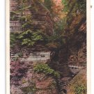 Watkins Glen NY Pillar of Beauty Tichnor Vintage Postcard