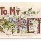 To My Pet Gilded Glitter Vintage Embossed Postcard ca 1908