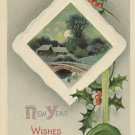 Country Scene Holly Vintage Embossed New Year Postcard