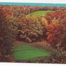 Golf Pocono Manor PA The famous 7th hole No. 8 Green Vintage Postcard
