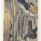 Shenandoah Caverns VA Hanging Gardens Vintage Postcard