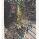 Watkins Glen NY Whirlwind Gorge 1932 Tichnor Postcard