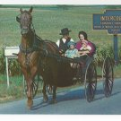 Intercourse PA Amish Family in Horse and Buggy Vintage Postcard