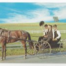 Amish Courting Buggy Young Men Pennsylvania Dutch Country Vintage Postcard