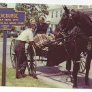 Intercourse PA Amish Teens Socializing Horse Buggy Vintage 1969 Postcard