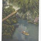 Sanford FL Fishing Wekiwa River Vintage Curteich 1960 Linen Postcard
