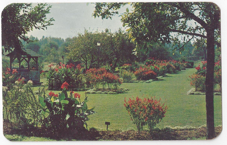 Allentown PA Cedar Parkway Garden Vintage Postcard