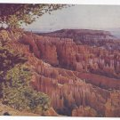 UT Bryce Canyon National Park Utah Vintage Mike Roberts Postcard