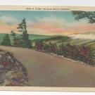 NC Blue Ridge Parkway View Vintage Linen Postcard