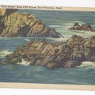 CA San Francisco Seals on Seal Rock Vintage 1943 Linen Postcard