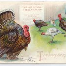 Thanksgiving Turkey Proclamation Vintage Tuck's Postcard