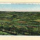 NY East Windham Valley View Catskills Vintage New York Postcard