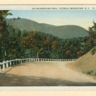 NY Mohican Trail Catskill Mountain Road Vintage Postcard