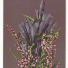 Flowers Bouquet Vintage Postcard Switzerland Photochromie