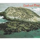 CA Seal and Bird Rock Monterey 17 Mile Drive Vintage Postcard