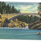 WY Yellowstone Park Rainbow Bridge Vtg Tichnor Linen Postcard Wyoming