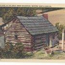 NC Smoky Mountain Home Cabin Western North Carolina Vtg Linen Postcard