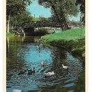 MN Loring Park Minneapolis Minnesota Vtg Postcard Duck Pond
