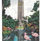 Bok Tower Florida Lake Wales Pink Flamingos Vtg Postcard