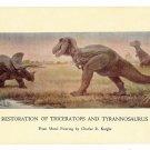 Chicago Natural History Museum Tyrannosaurus Dinosaur Postcard C Knight