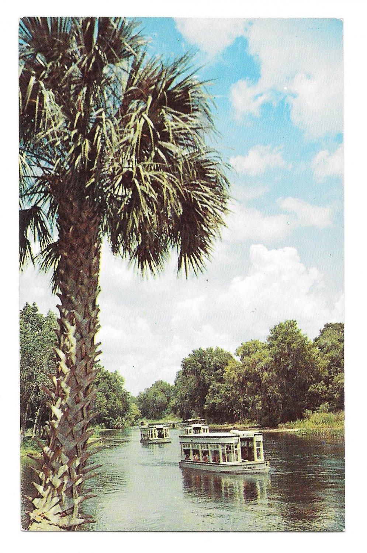 Glass Bottom Boat Tours in Homosassa, FL 34448