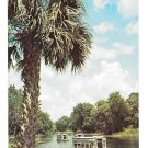 FL Silver Springs Glass Bottom Boats Silver River Vintage Florida Postcardg Art Postcard