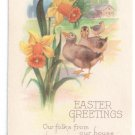 Easter Greetings Ducks Daffodils Vintage Karle Postcard