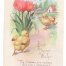Best Easter Wishes Chicks Tulips Butterfly Vntg Karle Poem Postcard