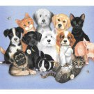 Modern Advertising Postcard Veterinay Reminder Sue Hall Illustrator Cats Dogs