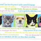 Modern Advertising Postcard Veterinarian Appt Reminder Cats Dogs Animals
