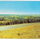 Eastern Oregon Blue Mountains Hwy 30 Deadman Pass View Vintage Postcard
