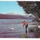 Odell Lake Oregon Trout Fishing Vintage Postcard Walt Dyke Photo