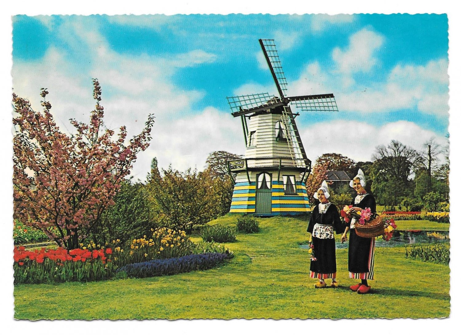 Netherlands Holland Flowers Windmills Tulips Women Traditional Costume Vntg Postcard