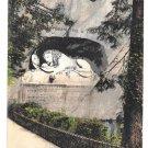 Switzerland Luzern Lowendenkmal Lion Monument Vintage Postcard