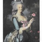Marie Antoinette Versailles Portrait Mme Vigee Lebrun Painting Vintage Postcard