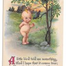 Vintage Kewpie Postcard A Little Bird Told Me Gartner & Bender