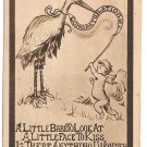 Birth Announcement Stork Baby Cherub w Banner Roth & Langley 1909 Postcard