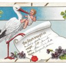 1912 Birth Announcement Stork with Baby Shamrocks Violets Vintage Postcard