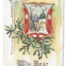 Best New Years Wishes Snow Drops Mistletoe Cottage Scene Embossed 1917 Postcard