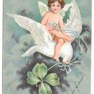 Valentine Postcard Shamrock Cupid Angel Riding on Dove Four Leaf Clover IAP
