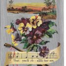 Remember Me Pansies Flowers on Silver Moire Mandolin Music Notes Vintage 1909 Postcard
