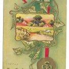 Shamrock Four Leaf Clover Farm Scene Ivy Joy Vintage Embossed Gold Postcard 1912